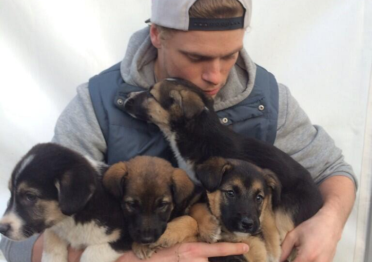 Gus-Kenworthy-Saves-Stray-Puppies